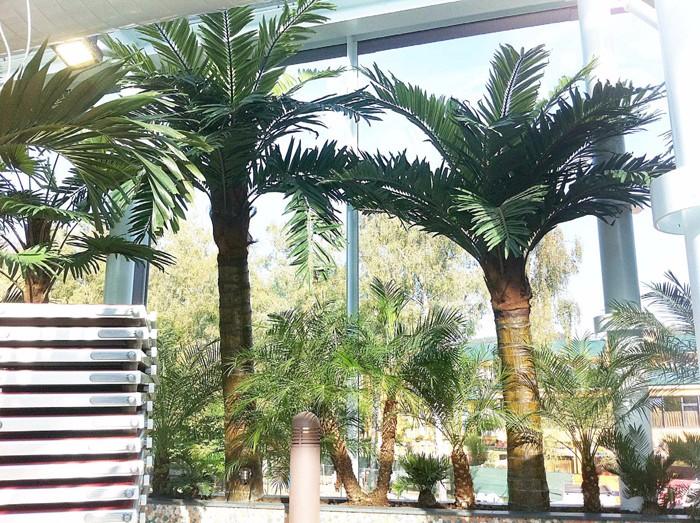 奥地利温泉水疗中心仿真棕榈树
