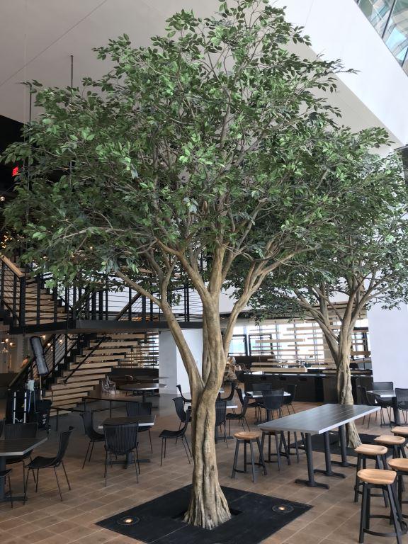 仿真树榕树在不同场合的作用