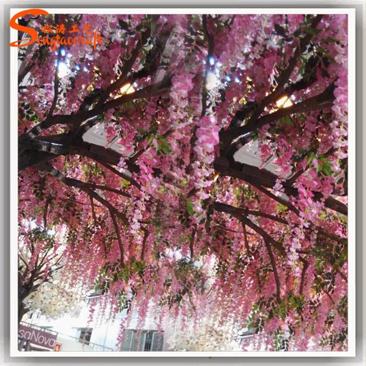 花树j19.jpg