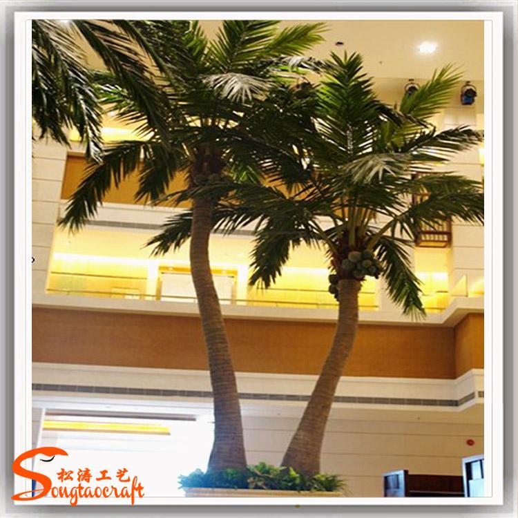 椰子树 (5).jpg